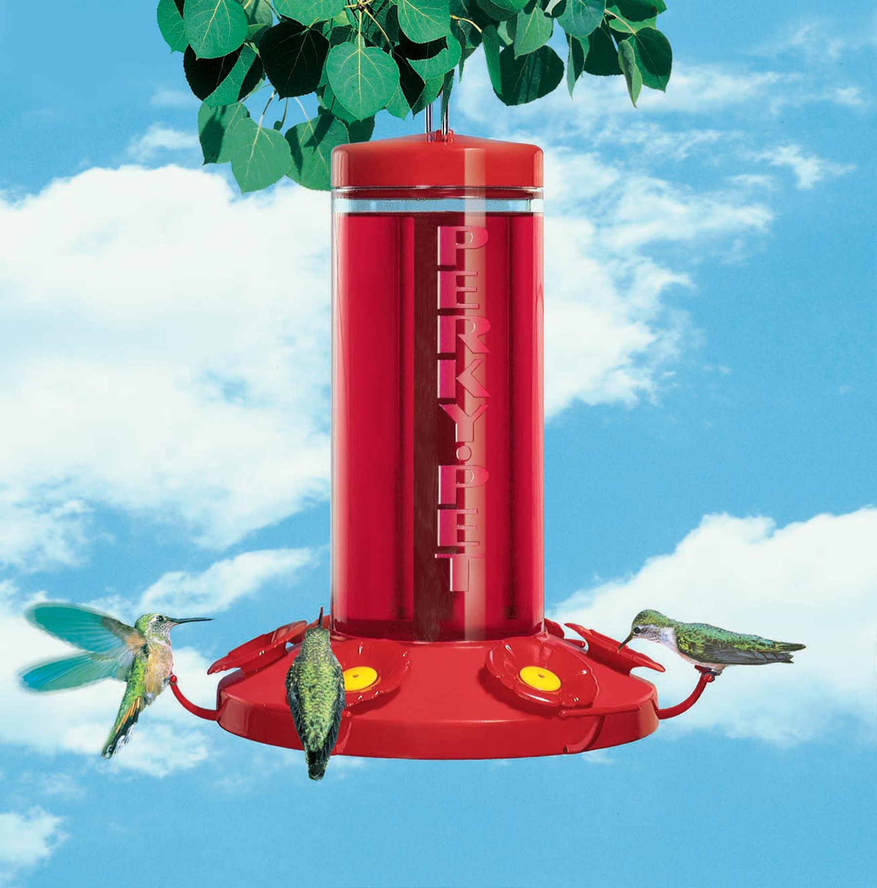 Hummingbird Feeders (2)