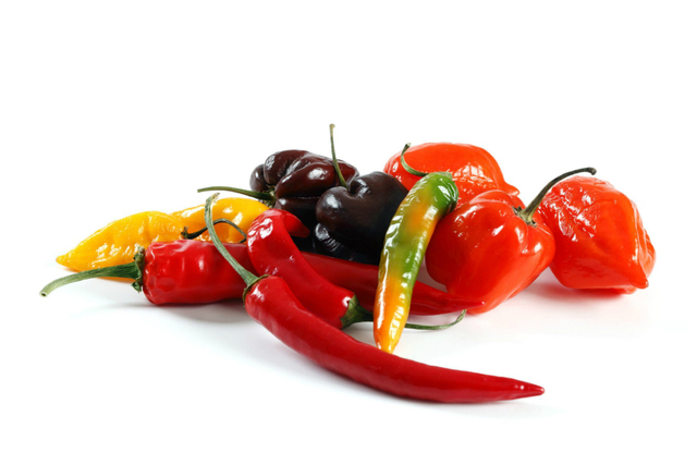 Peppers - hot or mild edibles
